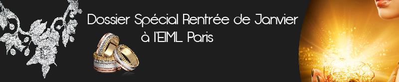 Dossier Spécial Rentrée de Janvier à l'EIML Paris
